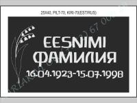 РИСУНОК-070, ШРИФТ-070(латиница/кирилица)