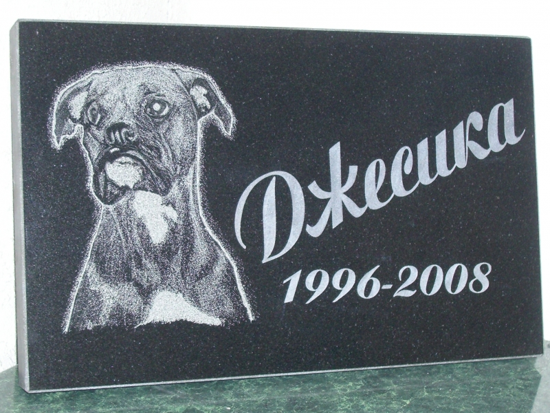 Looma portree hauakivil - koer (Dzesika)
