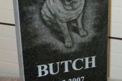 Looma portree hauakivil - koer (Butch)