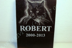 Looma portree hauakivil - kass (Robert)