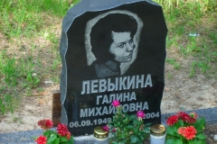 Portree  hauakivil - 9 (Levõkina)